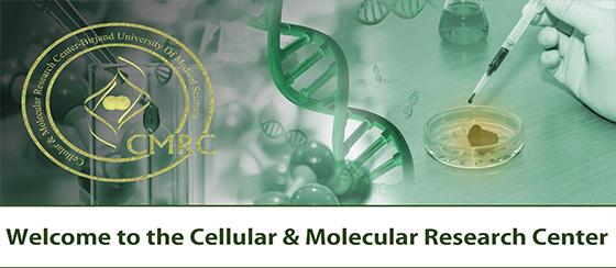 به وبسایت مرکز تحقیقات سلولی و مولکولی دانشگاه علوم پزشکی بیرجند خوش آمدید